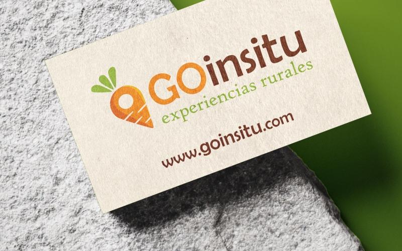 Goinsitu Logo