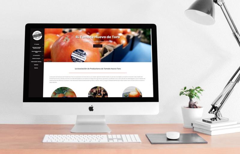 Web Design Tomates Huevo de Toro